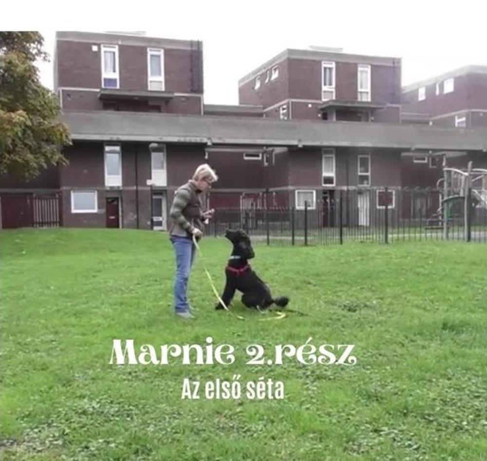 Marnie sétál